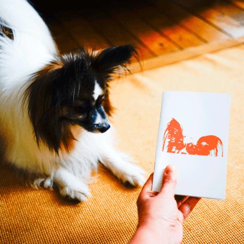 Loulou et son carnet